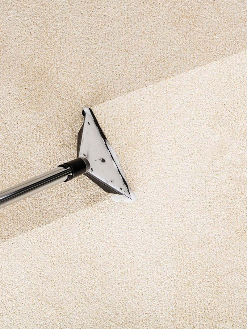 Carpet Cleaning Services Near San Diego